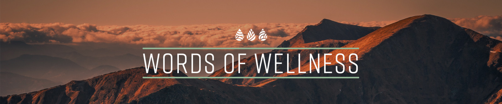 words of wellness words over nature landscape