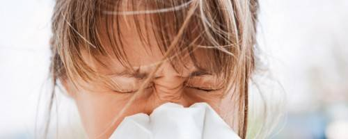 Banner Image for Relief for Seasonal Allergies Through Massage