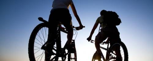 Banner Image for Massage for Cyclists