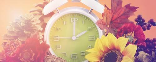 How to Utilize That Extra Hour You Slept Through