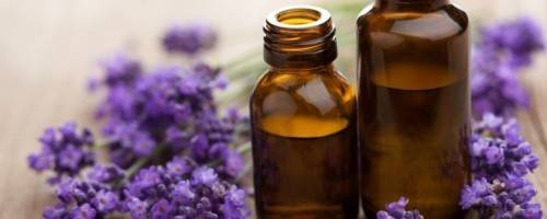 Banner Image for Essential Oils: How Aromatherapy Encourages Relaxation