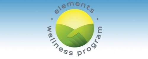 Banner Image for Elements Wellness Program
