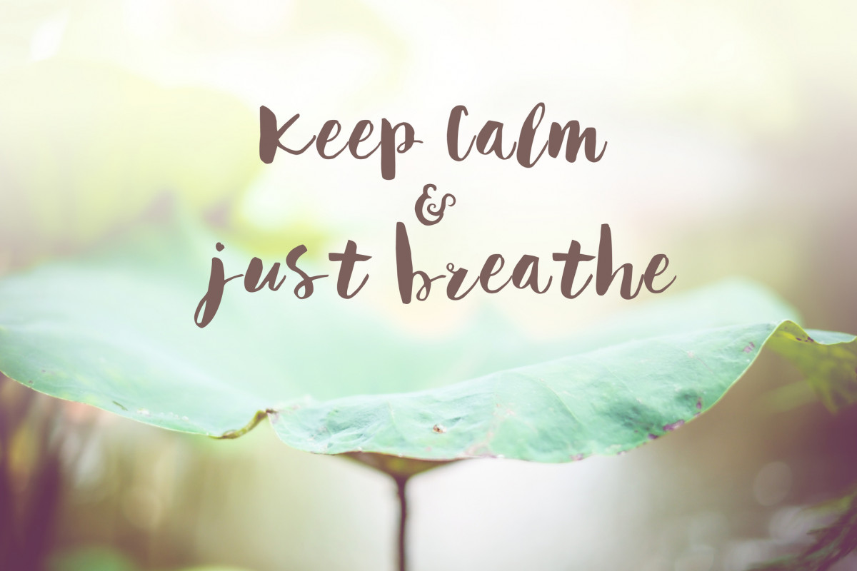 Banner Image for Ways to Feel More Calm