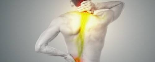 Banner Image for Routine Massage Supports Bone and Joint Health
