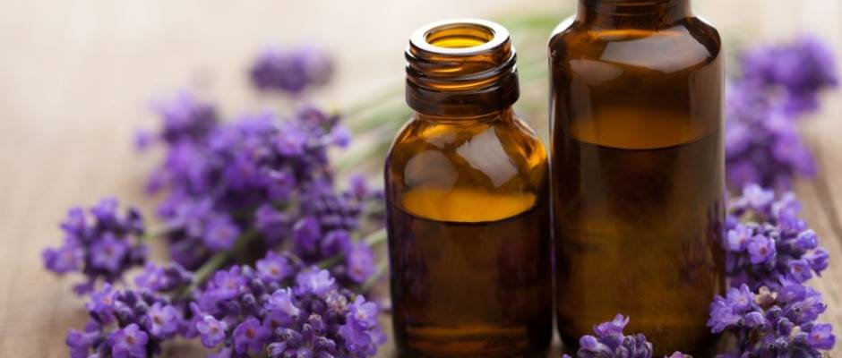 Banner Image for Aromatherapy for Wellness