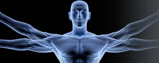 Banner Image for Physiological Benefits of Massage