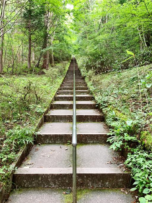 stair trail through a forest
